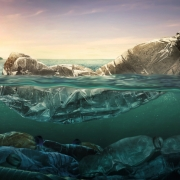inquinamento da plastica bottiglie