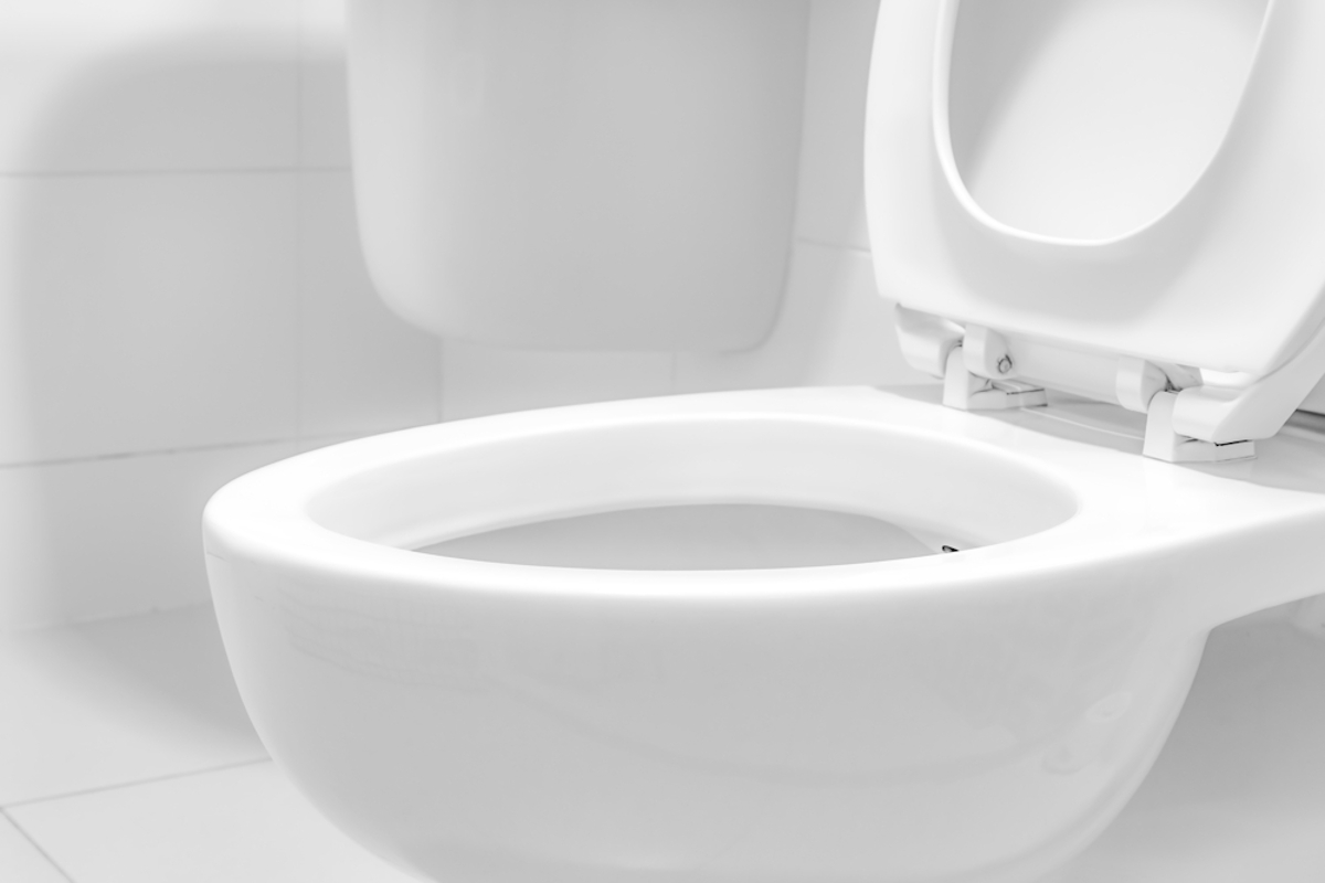 Incrostazioni Di Calcare Nel Wc vaso wc: l'importanza della sua corretta igienizzazione